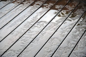 wet-wood-1152822